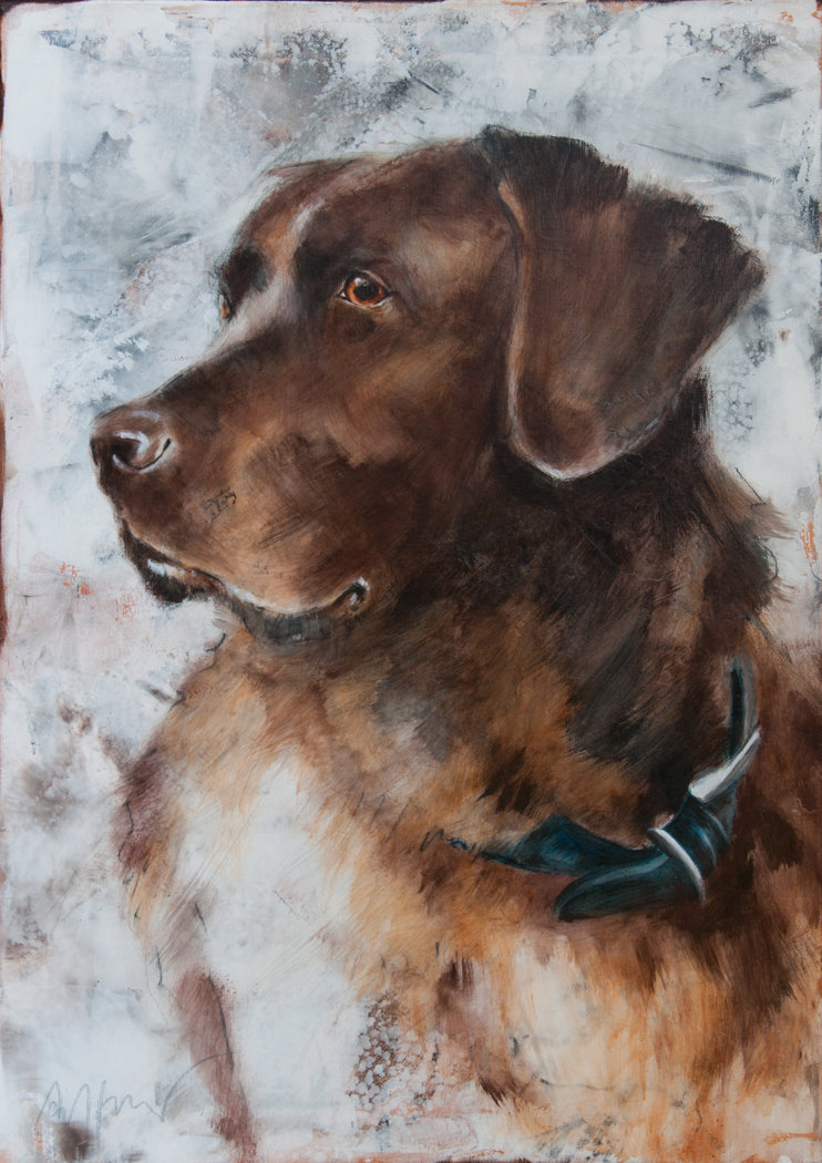 Thomas Aeffner - Labrador Retriever